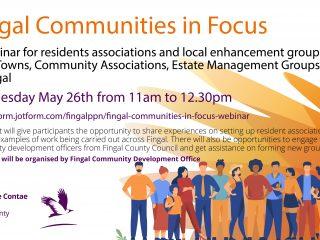 Fingal Communities on Focus webinar